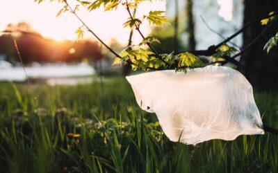 Hvorfor vil vi erstatte plastik?