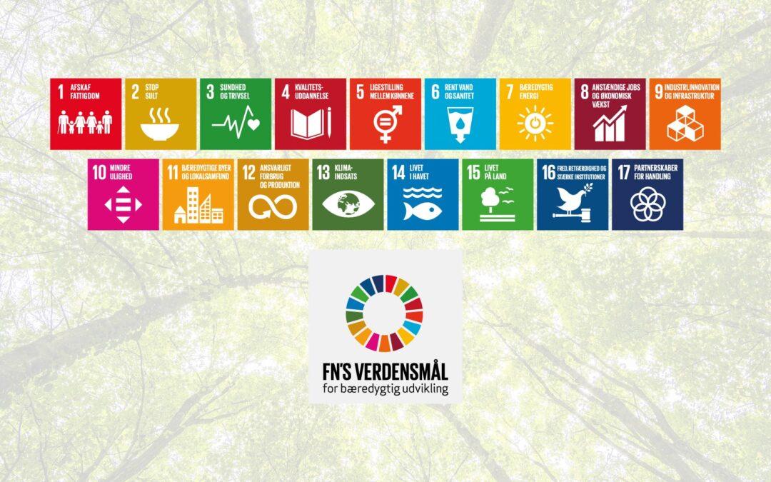 Sådan kan du selv arbejde for opnåelse af FN's verdensmål